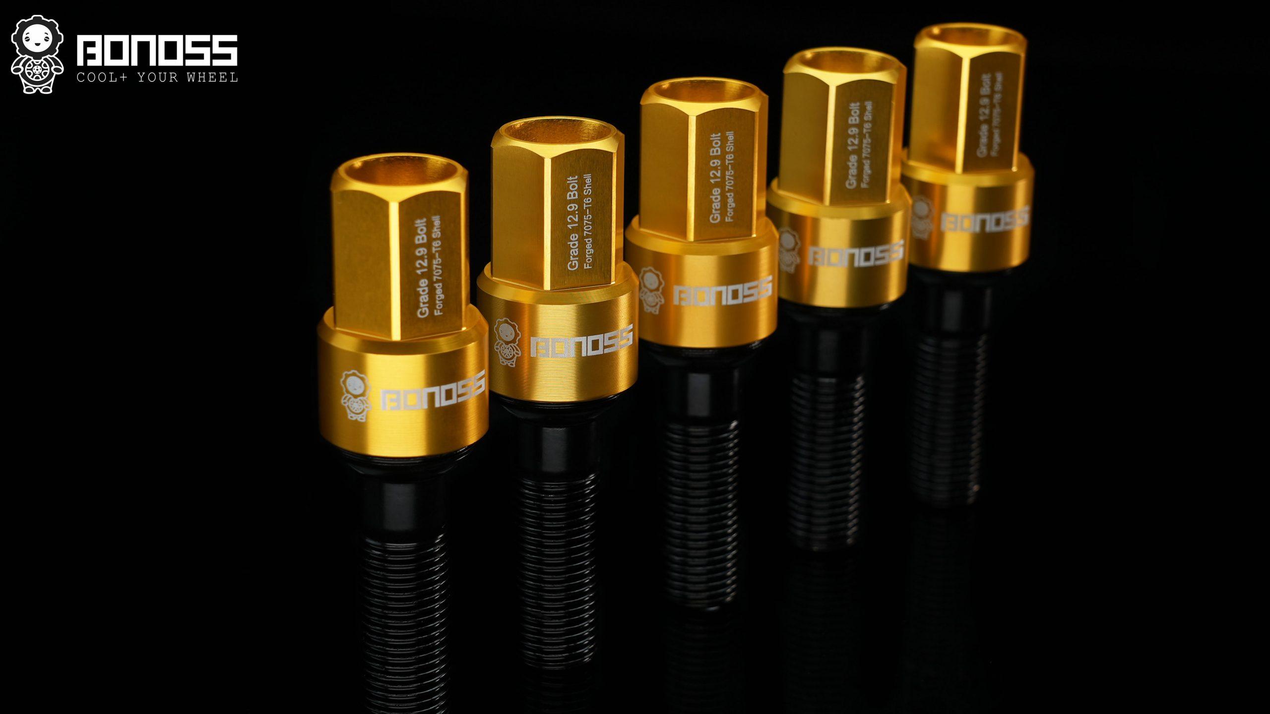 BONOSS shell type lock bolt kit